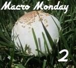 Macro_Monday_2